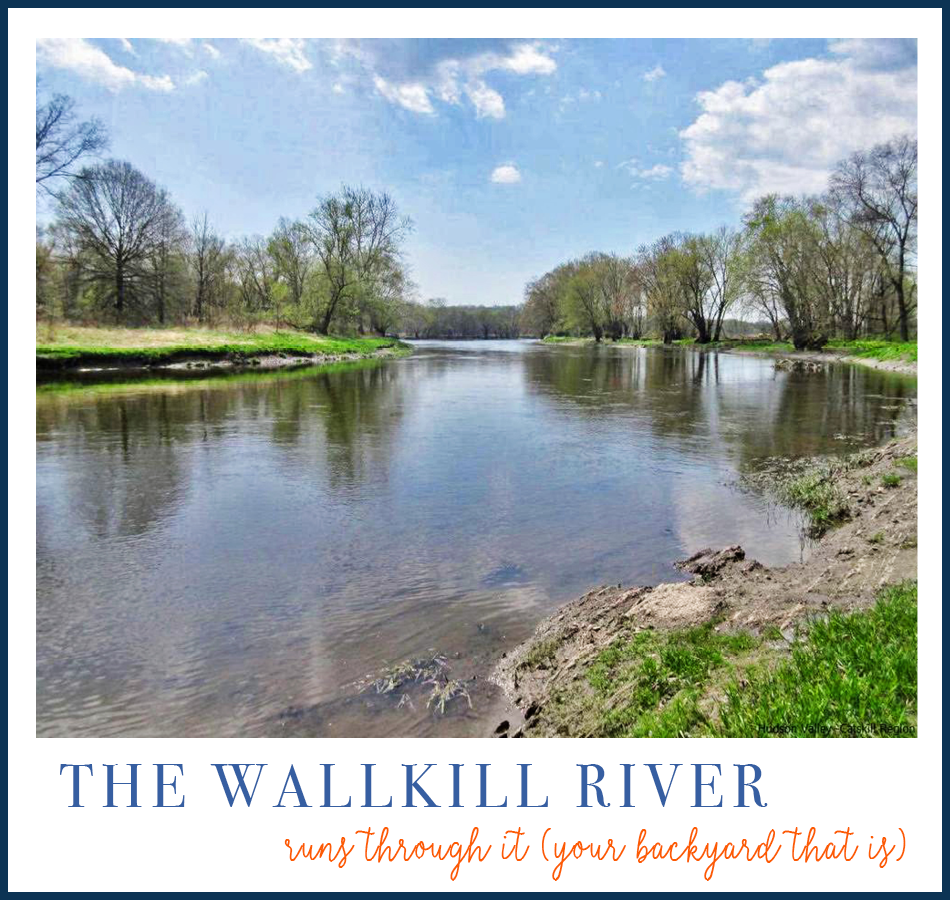 Wallkill River Backdrop | New Paltz NY Waterfront Real Estate photo
